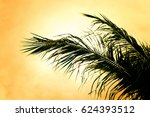 coconut palm tree silhouettes... | Shutterstock . vector #624393512