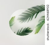 tropical palm leaves on bright... | Shutterstock . vector #624468932