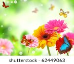Colored Gerberas Flowers With...