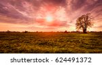 lonely tree   haystack sunset | Shutterstock . vector #624491372