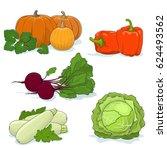 fresh gardening vegetables... | Shutterstock .eps vector #624493562