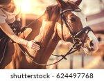 Hand Of Female Rider Rubbing...