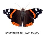 Red Admiral Butterfly  Isolate...
