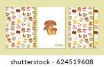 cover design for notebooks or... | Shutterstock .eps vector #624519608