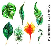tropical hawaii leaves palm... | Shutterstock . vector #624578402