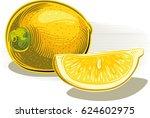 lemons on white. two slices of... | Shutterstock .eps vector #624602975