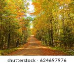 Small photo of Autumn Foliage Road in North Woods ~ Nevis, Minnesota