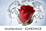 Red Rose With Water Effect