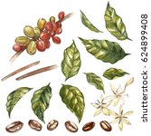 set of red coffee arabica beans ... | Shutterstock . vector #624899408