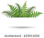 fern frond frame vector... | Shutterstock .eps vector #625011032