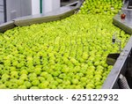 green delicious apples in... | Shutterstock . vector #625122932