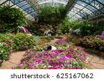 colorful flowers in glasshouse | Shutterstock . vector #625167062