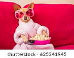 Stock photo chihuahua dog watching tv or a movie sitting on a red sofa or couch with remote control changing 625241945