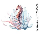 hand drawn watercolor seahorse. ... | Shutterstock . vector #625260008