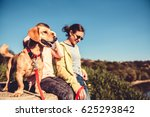 small yellow dog and family... | Shutterstock . vector #625293842