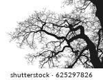 realistic tree silhouette ...   Shutterstock . vector #625297826
