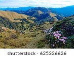 Small photo of Spring scenery of beautiful Hehuan Mountain in central Taiwan, with a panoramic view of a majestic mountain range in background & lovely pink Alpine Azalea ( Rhododendron ) blossoms on grassy hillside