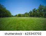 grass in park | Shutterstock . vector #625343702