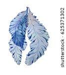 watercolor botanical... | Shutterstock . vector #625371302