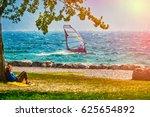 Windsurfer Pro Rider Surfing A...