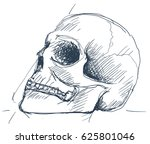 pen sketch of a human skull.... | Shutterstock .eps vector #625801046