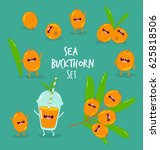 sea buckthorn smoothies | Shutterstock .eps vector #625818506