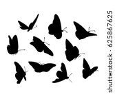 Vector Graphic Of Flying...