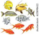 hand drawn underwater natural...   Shutterstock .eps vector #625898612