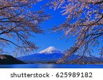 mt.fuji and cherry blossoms... | Shutterstock . vector #625989182