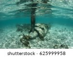 Small photo of A Japanese Zero fighter, shot down in late March 1944 during Operation Desecrate One, lies on the shallow seafloor in the Republic of Palau. Heavy casualties occurred in Palau during World War II.