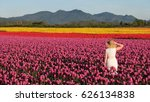 Woman On Colourful Tulip Fields....