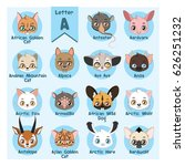 animal portrait alphabet  ... | Shutterstock .eps vector #626251232