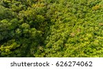 aerial view of tree in mountain | Shutterstock . vector #626274062