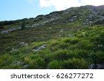 High Alpine Vegetation On A...