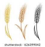 colorful isolated hand drawn... | Shutterstock .eps vector #626399042