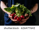 organic fresh harvested... | Shutterstock . vector #626477642