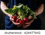 organic fresh harvested... | Shutterstock . vector #626477642