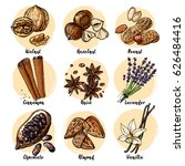 nuts and spices line drawn on a ... | Shutterstock .eps vector #626484416