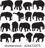 asian elephant silhouette...   Shutterstock .eps vector #626672075