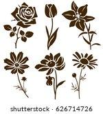 Set Of Decorative Flower...