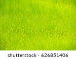 green grass background | Shutterstock . vector #626851406