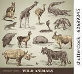 vector set  wild animals  ... | Shutterstock .eps vector #62689345