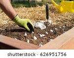 close up of gloved gardener's... | Shutterstock . vector #626951756