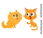 Stock vector pomeranian spitz dog and red cat kitten characters friendship concept cartoon vector 626963165