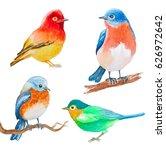 set of watercolor birds... | Shutterstock . vector #626972642