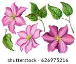 Watercolor Spring Flowers  Han...