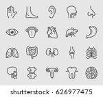 Anatomy And Organ Line Icon