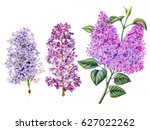 Watercolor Hand Painted Lilac...
