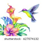 watercolor illustration  exotic ... | Shutterstock . vector #627074132