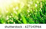grass closeup with dew drops in ... | Shutterstock . vector #627143966